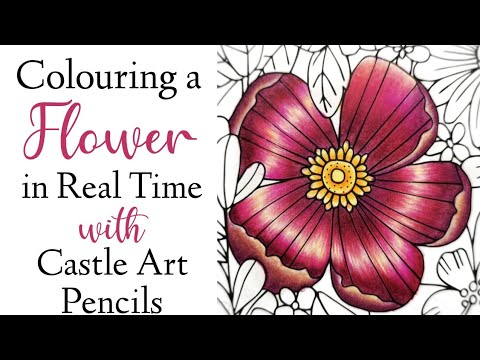 Coloring a Flower in Real Time with Castle Art Colored Pencils