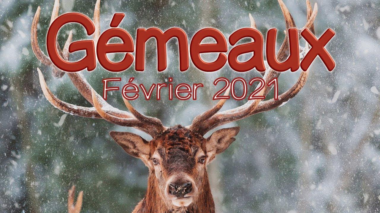 GEMEAUX Février 2021 ~ Un petit rictus !!!