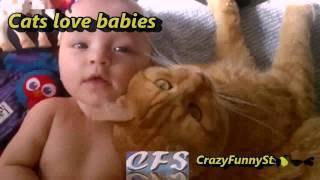 Кошки ласкаются к малышам.