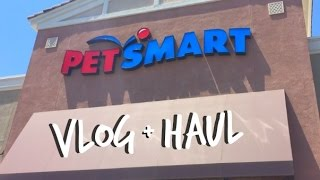 NEW FISH? | PETSMART VLOG + HAUL