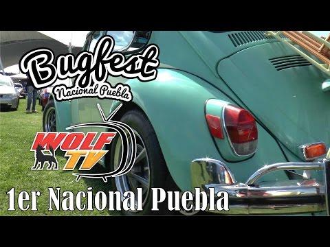 Bugfest Nacional Puebla 2016