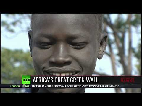 The Good News: Africa's 'Great Green Wall', New York's Plastic Ban, World Literacy Rates