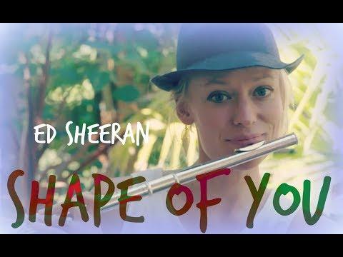 'Shape of You' - Ed Sheeran (flute cover)