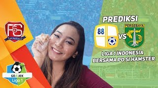 #Prediksi BARITO PUTERA VS PERSEBAYA bersama PO si Hamster