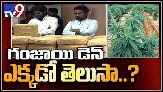 రెచ్చిపోతున్న గంజాయి గ్యాంగ్ : హైదరాబాద్ - TV9
