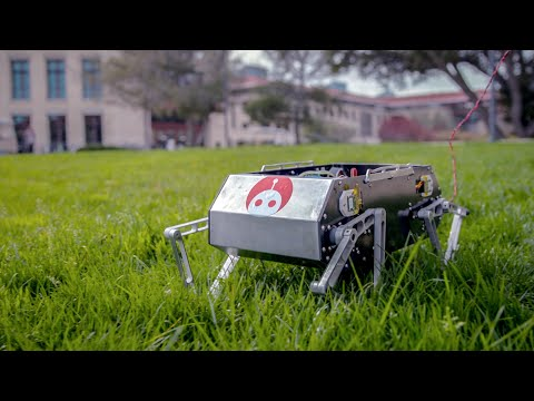 Video: Stanford University students' low-cost 'Doggo' robot can perform flips and jumps
