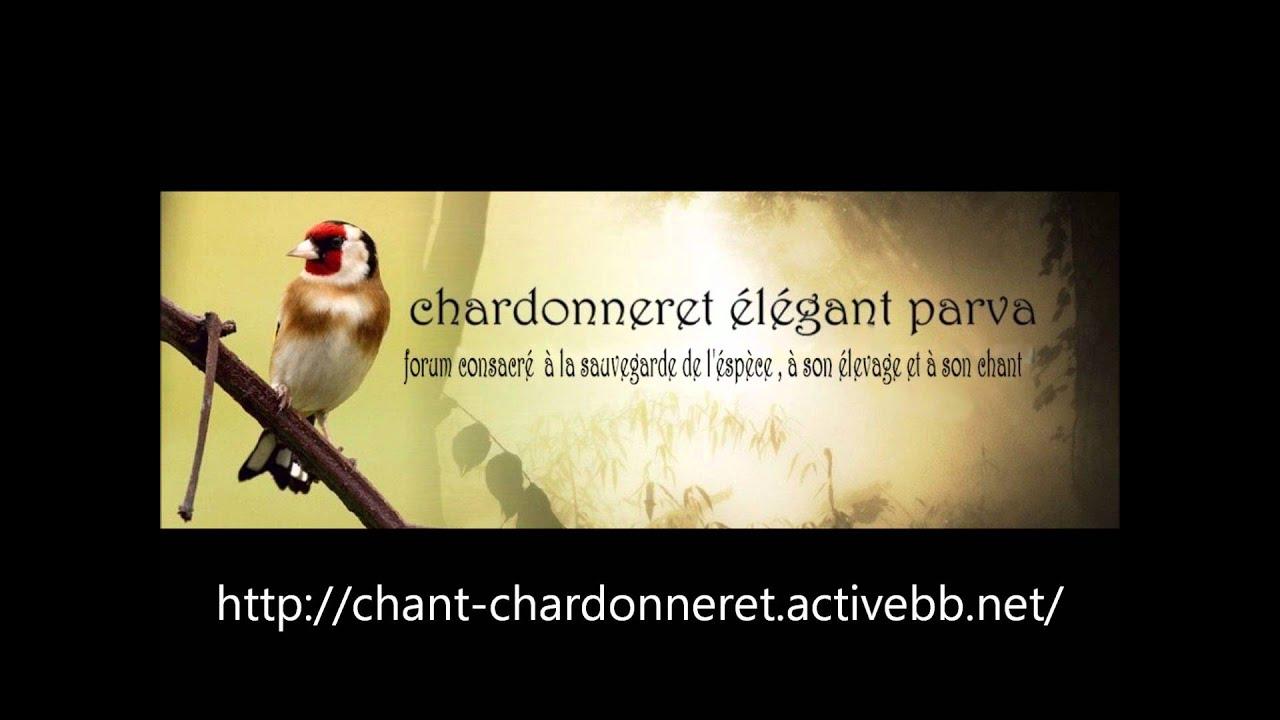 chant maknine gratuit
