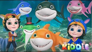 Baby Shark | Emoji Shark | Baby Shark New | 3D Rhymes by KiddieTV ©