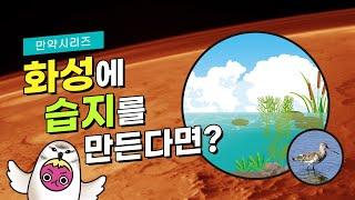 만약 화성에 습지를 만…