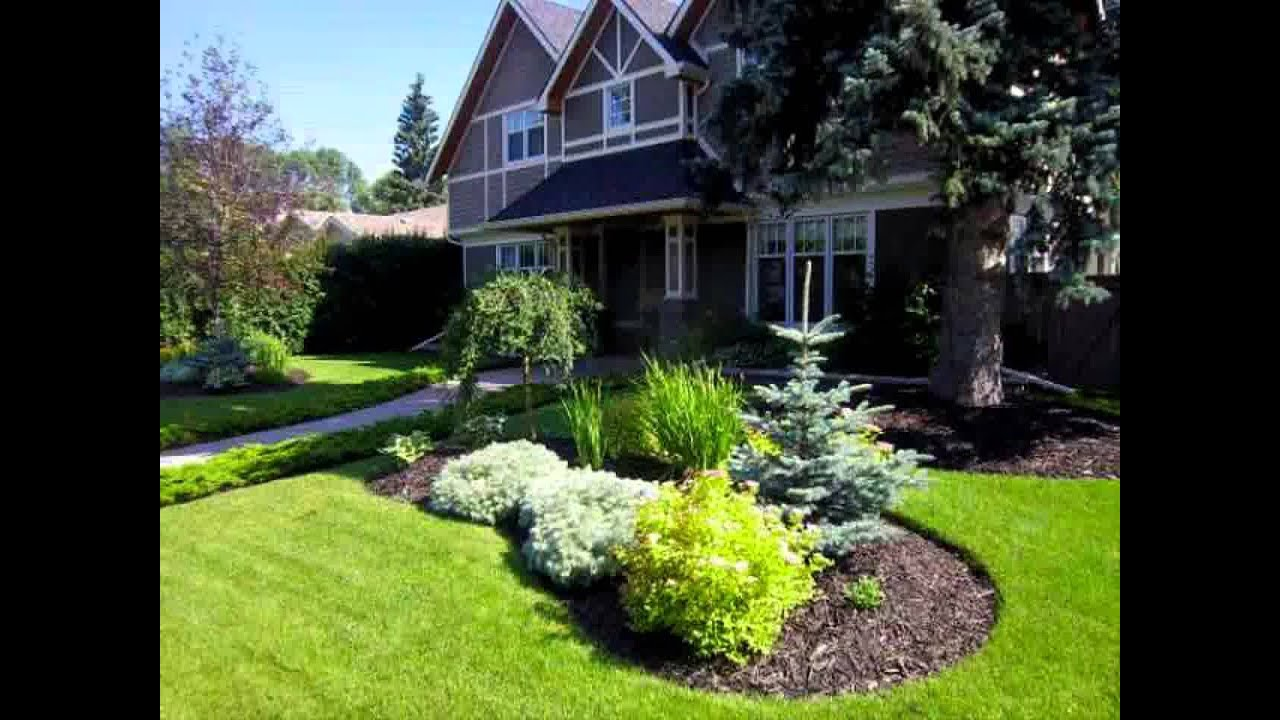 Tree For Front Yard Ideas Part - 36: Small Home Trees For Front Garden Ideas - YouTube