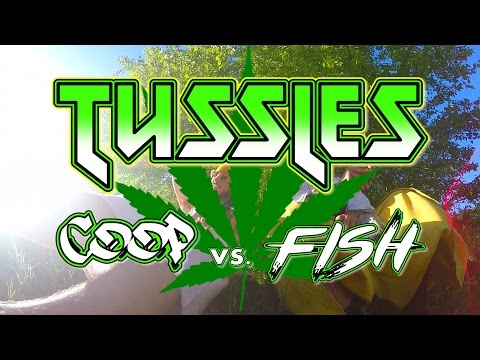 COOP vs. FISH (420 SPECIAL)