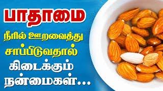 Top 10 Health Benefits Of Soaked Almonds (Badam) Tamil