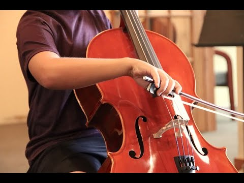 Mary Had A Little Lamb - Cello sheet music notes