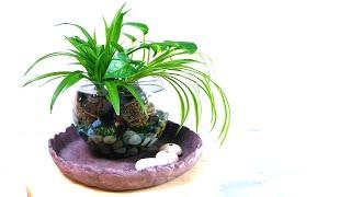 (소소한 식물인테리어/수경재배) 세팅만으로도 봄기분을 …