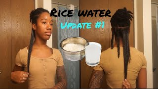 Rice Water Update Month 1