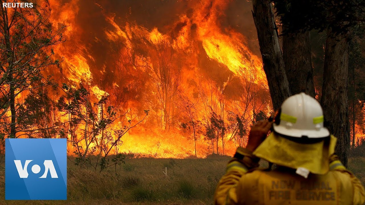 Image result for australia firefighters