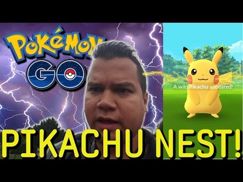 PIKACHU NEST! DODGE PARK STERLING HEIGHTS MICHIGAN! Pokemon GO! EP31