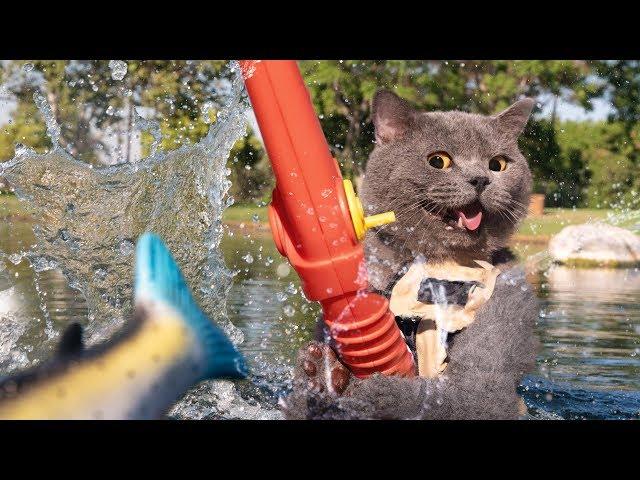 When Cats Go Fishing