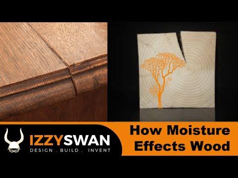 Understanding Wood Moisture | Woodworking How to