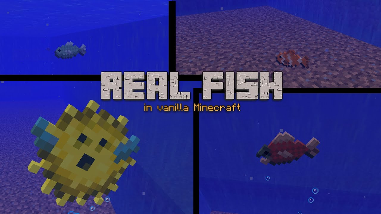 Real Fish in vanilla Minecraft - Module - YouTube