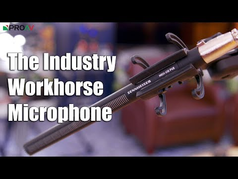 Why is the Sennheiser 416 the industry standard microphone?
