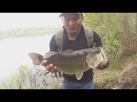 Big Bass Fishinh At Congers Lake Ny