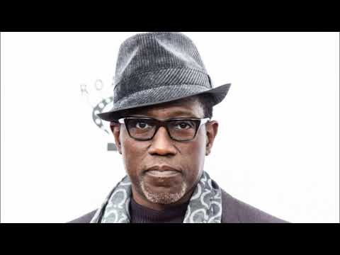 Wesley Snipes forced to pay ter IRS 9.5 Million in taxes
