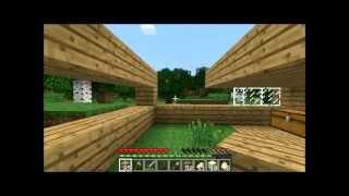 Minecraft Suomi: Talo muodostuu. #3