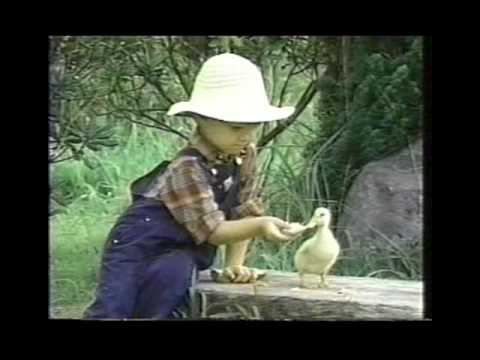 """Song """"Quacky The Duck"""" Children's Music Video"""
