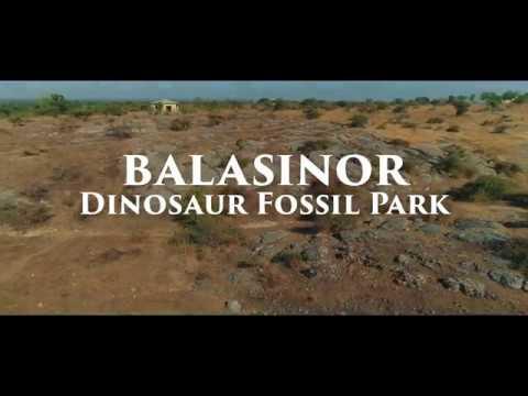 Dinosaur Fossil Park -  India's Jurrasic Park