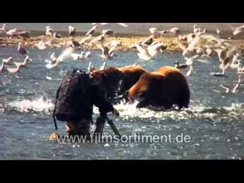 Bären große Schwänze College orgies pics