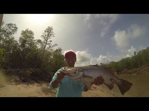 Ultimate Barra Fishing- Heli Fishing Darwin NT