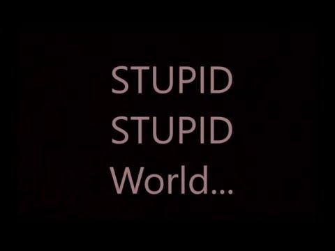 Talking kitty Stupid Stupid World