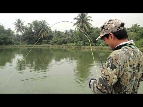 Vision Fly Fishing Thailand