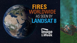 Fires Worldwide as Seen by Landsat 8