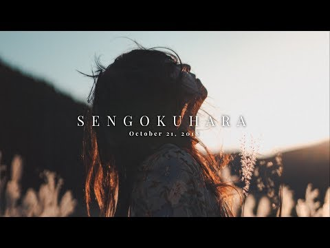 SHORT TRIP TO SENGOKUHARA | SHOT ON SONY A7III WITH HLG COLOR PROFILE