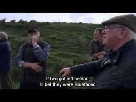 Cefn Gwlad - Episode 9 Glyn Williams