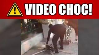 VIDEO CHOC! IMMIGRATO CUCINA UN GATTO ALLA STAZIONE DI CAMPIGLIA MARITTIMA (LI)