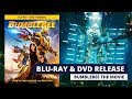 Download mp3 Bumblebee Movie Blu-Ray, DVD & Digital Release Details! for free
