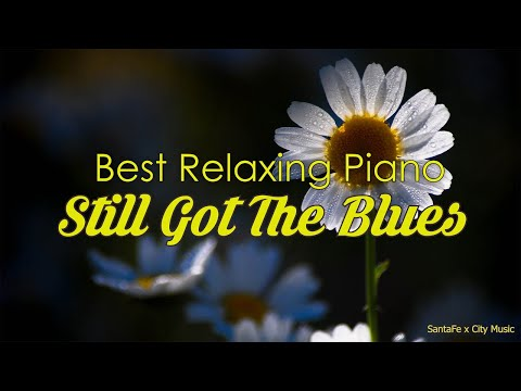 Still Got The Blues 🎵 Best relaxing piano, Beautiful Piano Music | City Music