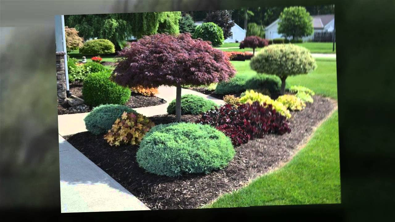 Las Vegas, NV Landscaping - Easy Landscaping Ideas - YouTube on Basic Landscaping  id=40864