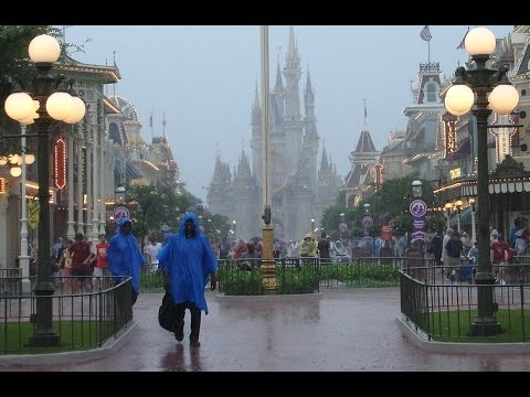 What Really Happens in Walt Disney World