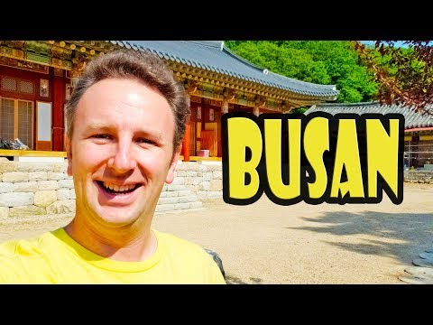 Busan Gamcheon Culture Village & Temple Stay in Busan - Korea Trip Day 3