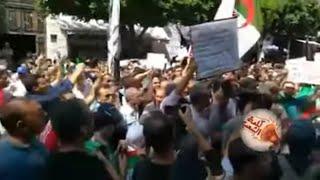 شاهد.. هتافات طلبة الجزائر أمام مقر لجنة الحوار في مظاهرات الثلاثاء 26 🇩🇿