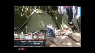 Дикий медведь разгромил палаточный лагерь в Сочи