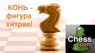 Шахматная тактика на chess.com. Действительно красивая задача высокой сложности!