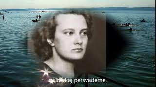 József Attila, Sebő Ferenc – Rejtelmek – Esperanto – subteksto