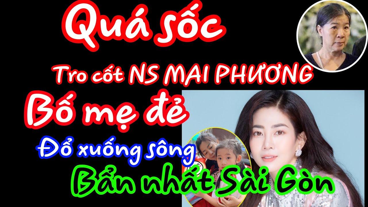 QUÁ S.Ố.C, Tro cot NS MAI PHƯƠNG bị bố mẹ đem rải xuống sông bửn nhất Sài Gòn / Bản tin STP