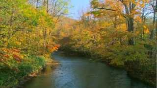 Piano Instrumental〜Moving Autumn 4