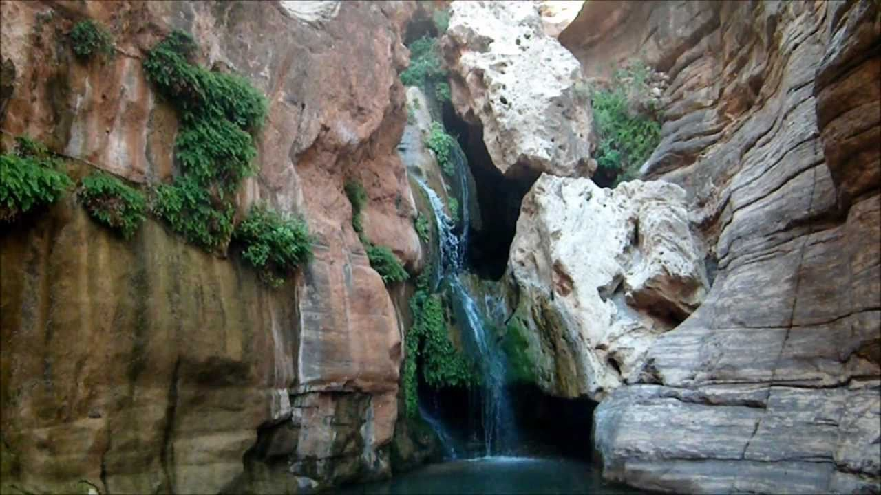 Hanging rain gardens in the Grand Canyon Elves Chasm YouTube